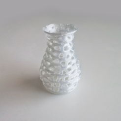 Free 3D printer file Voronoi Form Vase 1, David_Mussaffi