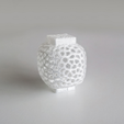 Free Voronoi Wind Vase 1 3D printer file, David_Mussaffi