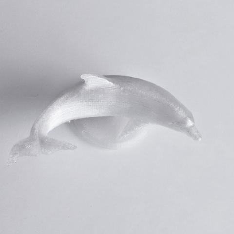 Capture_d__cran_2014-10-14___14.20.08.png Download free STL file Dolphin • 3D printable object, David_Mussaffi