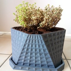 3d printer model Flower pot, Guich