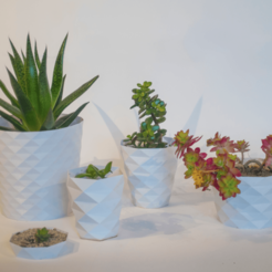 Download free 3D printing designs Parametric Flower Pots, cirion