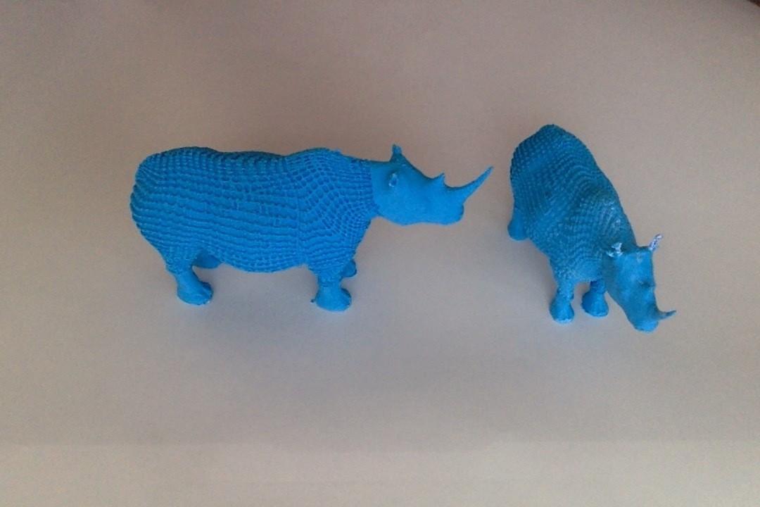 Photo_du_13-01-2015___13.18.jpg Download free STL file rhinoceros • Model to 3D print, chauvinxavier