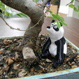 DSCN0540.JPG Download free STL file Panda • Model to 3D print, yourwildworld