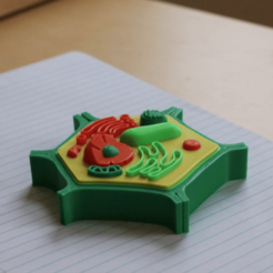 diseños 3d gratis Multi-Color Mini Plant Cell, MosaicManufacturing