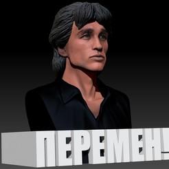 Télécharger fichier STL gratuit Viktor Tsoi 3d bust Виктор Цой Пермен 3д бюст • Design pour imprimante 3D, JanM15