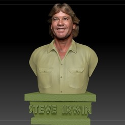Download 3D printer templates Steve Irwin the Crocodile Hunter, JanM15