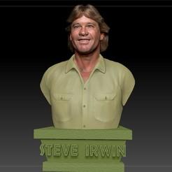 Descargar archivos 3D Steve Irwin el cazador de cocodrilos, JanM15