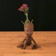 Free stl Baby Groot, Adafruit