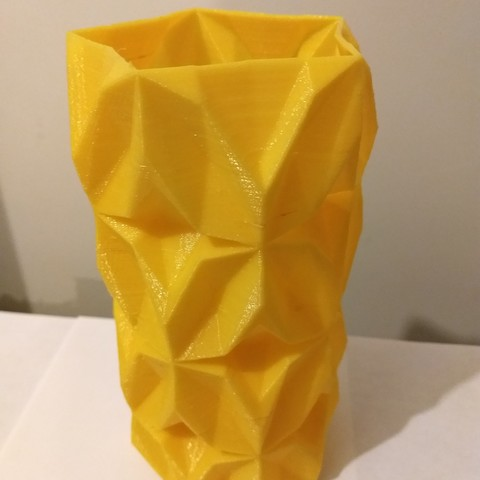 IMG_20180323_211302798.jpg Download free STL file Geometric Vase • 3D printable object, tridimagina