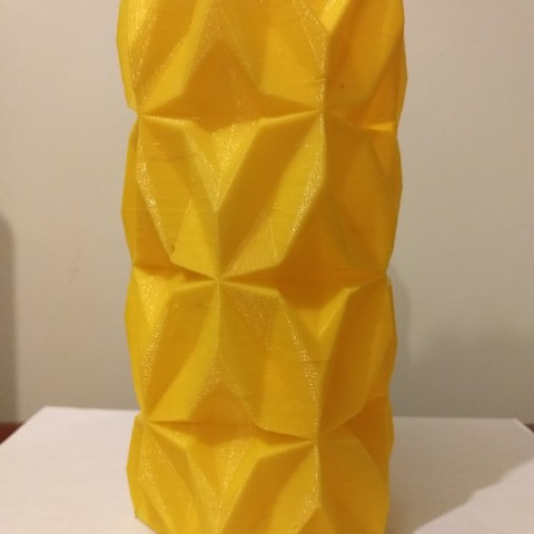 IMG_20180323_211202673.jpg Download free STL file Geometric Vase • 3D printable object, tridimagina