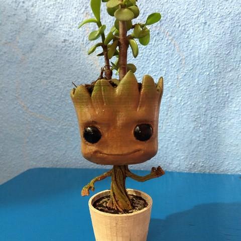 stl Gruut plant pot , tridimagina