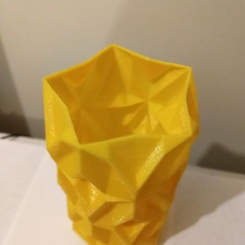 IMG_20180323_211259870.jpg Download free STL file Geometric Vase • 3D printable object, tridimagina