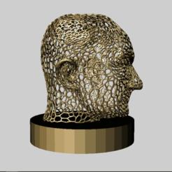 Télécharger fichier imprimante 3D gratuit Ataturk à la Voronoï, MiniFabrikam