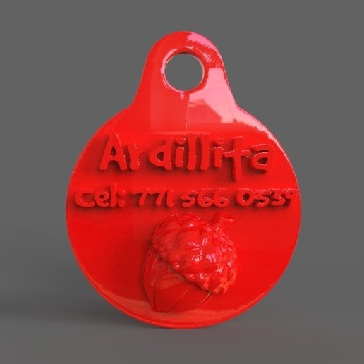 untitled.12.jpg Download STL file Pet Tag and Pet Jewelry Combo • Object to 3D print, PaburoVIII