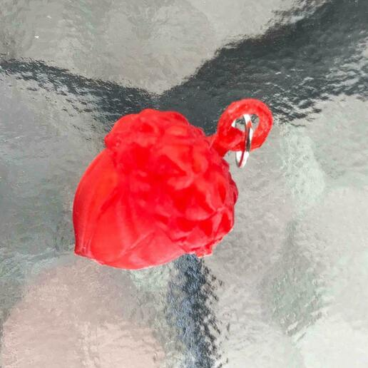 109973802_281866436249559_3938242190529701629_n.jpg Download STL file Pet Tag and Pet Jewelry Combo • Object to 3D print, PaburoVIII