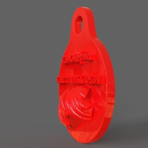 untitled.31.jpg Download STL file Pet Tag and Pet Jewelry Combo • Object to 3D print, PaburoVIII