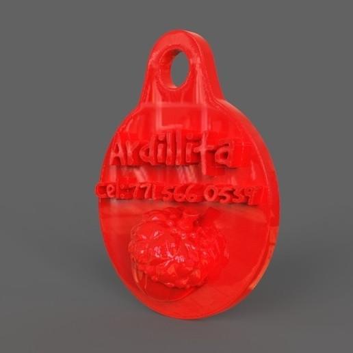untitled.13.jpg Download STL file Pet Tag and Pet Jewelry Combo • Object to 3D print, PaburoVIII