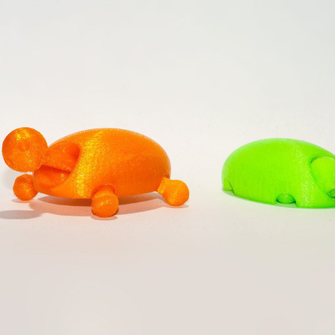 Free 3D printer file Turtle, Egon