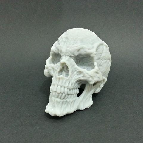 3D file Horror Skull, kfir