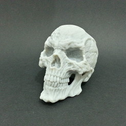 3D printer models Horror Skull, kfir