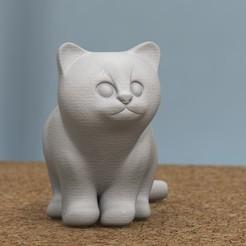 Descargar modelos 3D gatito sentado, bs3