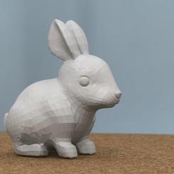 Free 3D print files rabbit [FREE], bs3