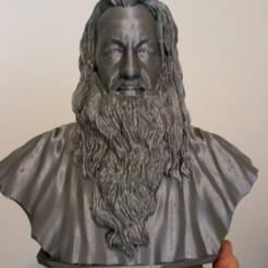 Free stl file Gandalf, austweb