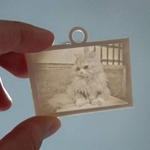 Capture d'écran 2017-03-16 à 11.41.17.png Download free STL file  Picture (up light) - Cats • 3D printable object, 3DP_PARK