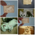 Capture d'écran 2017-03-16 à 11.41.00.png Download free STL file  Picture (up light) - Cats • 3D printable object, 3DP_PARK