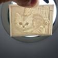 Capture d'écran 2017-03-16 à 11.41.26.png Download free STL file  Picture (up light) - Cats • 3D printable object, 3DP_PARK