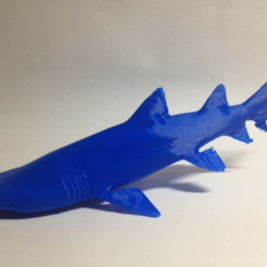 Capture d'écran 2017-03-22 à 16.10.59.png Download free STL file Grey Nurse Shark • 3D printer model, Roger