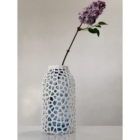 Free 3d print files Voronoi PET Bottle Vase, Roger