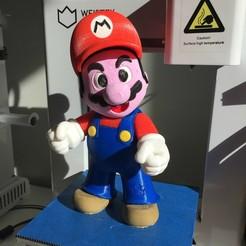 Download free STL file Super Mario complete set • 3D printer object, Djiss