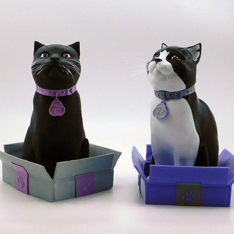 Download free 3D printer designs Schrodinky! Cults cat collar medals!!, loubie