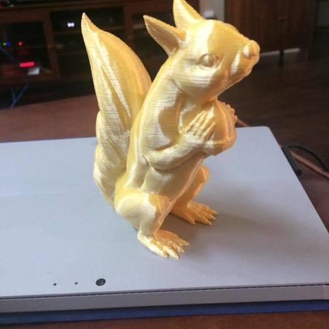 21430099_10214359295398846_5995927406472411620_n.jpg Download free STL file Squizzle! A No supports Squirrel Sculpt • 3D print model, loubie