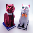 Objet 3D Murphy The Library Cat (with secret book box) -The Complete Package (multi and single material), loubie