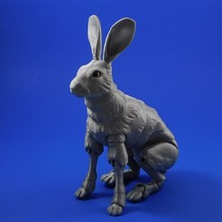 Free 3d print files The Fabled Hare (A 3D Printed Ball-jointed Doll), loubie