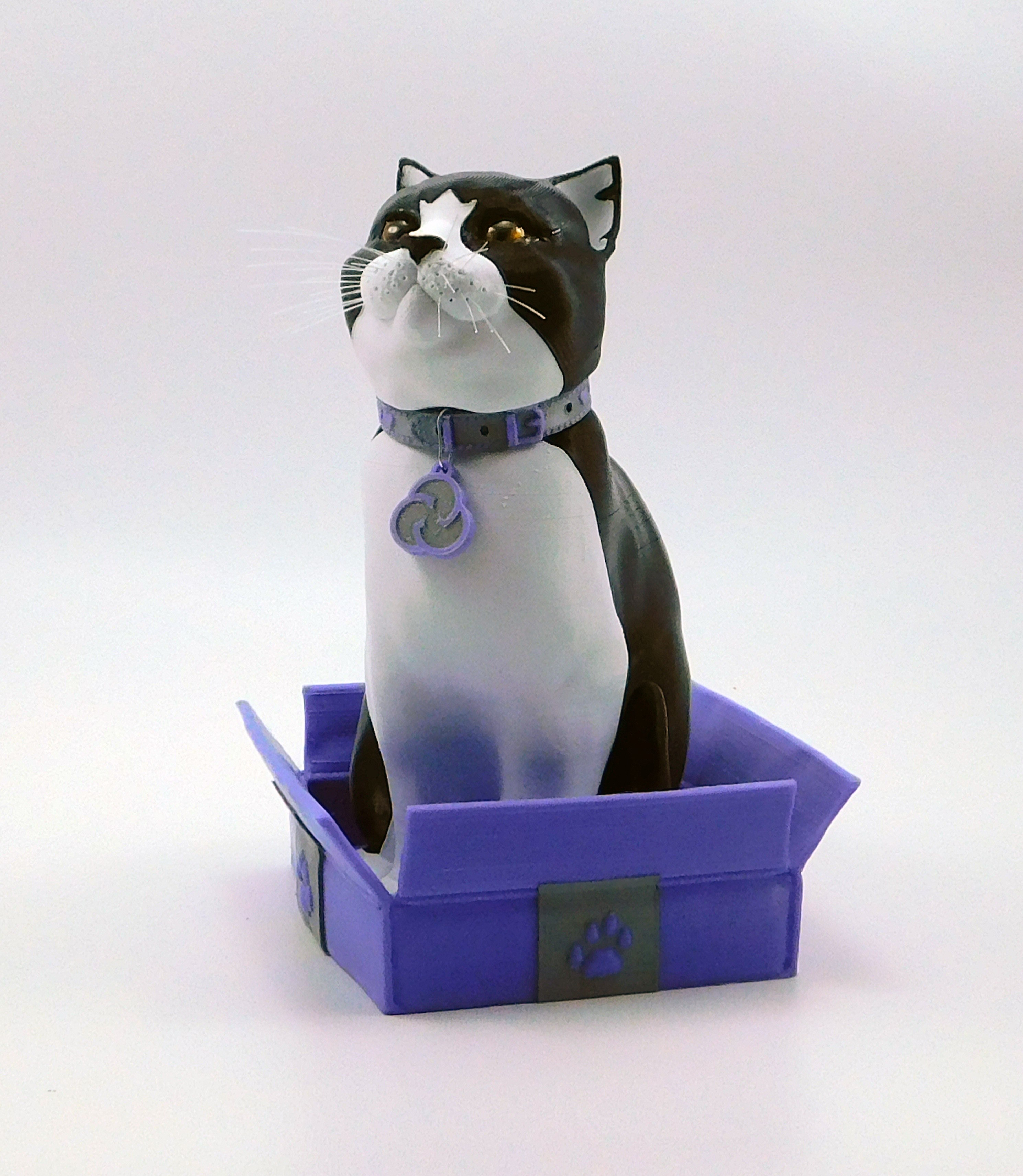cults3d_cats2.jpg Download STL file Schrodinky: British Shorthair Cat in a Box – 3D Printable, Multi Part Model - MULTI EXTRUSION PACKAGE • Object to 3D print, loubie
