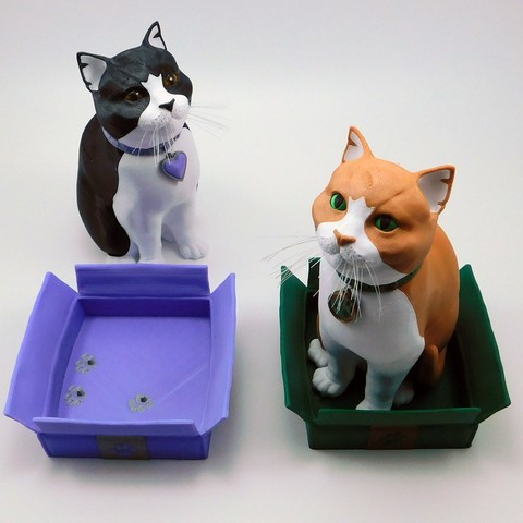 Download 3D printer templates Schrodinky: British Shorthair Cat in a Box – 3D Printable, Multi Part Model - MULTI EXTRUSION PACKAGE, loubie