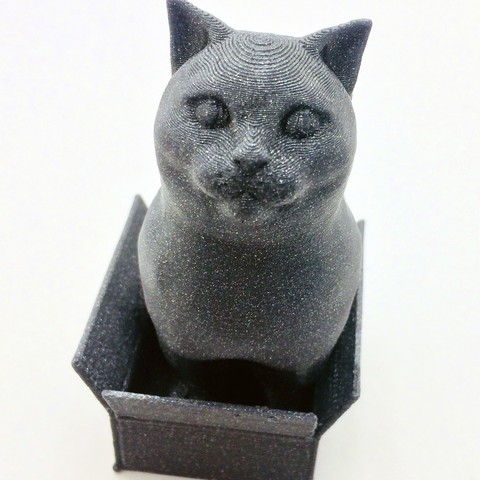 Download free STL file Schrodinky! British Shorthair Cat Sitting In A Box(single extrusion version), loubie