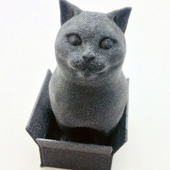 vertigo1.jpg Download free STL file Schrodinky! British Shorthair Cat Sitting In A Box(single extrusion version) • 3D printing object, loubie