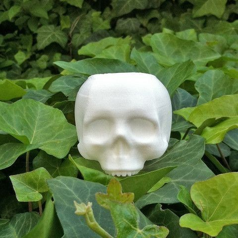1.jpg Download free STL file Skull Planter V3 - H80MM • Design to 3D print, juanmavargas