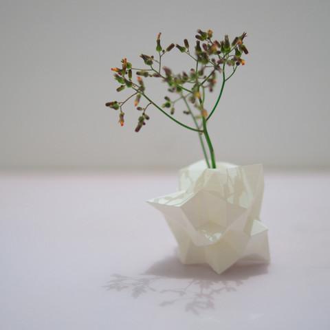 2014-04-27_22-11-56_-_______2.jpg Download free STL file Sphere Random Vase • 3D printing design, IDEABOX