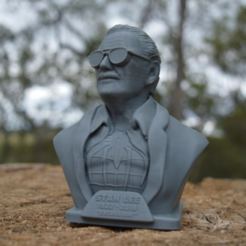 Download free 3D print files Stan Lee Memorial , Geoffro