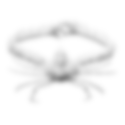 Download free STL files Elbow Crab, ThreeDScans