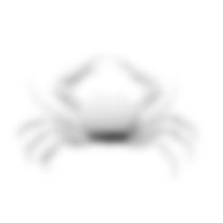 Download free STL files Carcinoplax Suruguensis, ThreeDScans