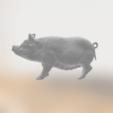 Capture d'écran 2019-03-25 à 14.27.45.png Télécharger fichier STL gratuit Truie Porcine • Plan pour imprimante 3D, sjpiper145