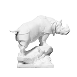 Download free 3D printer model Rhinoceros, ThreeDScans