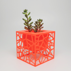 Free Voronoi Planter 3D model, O3D