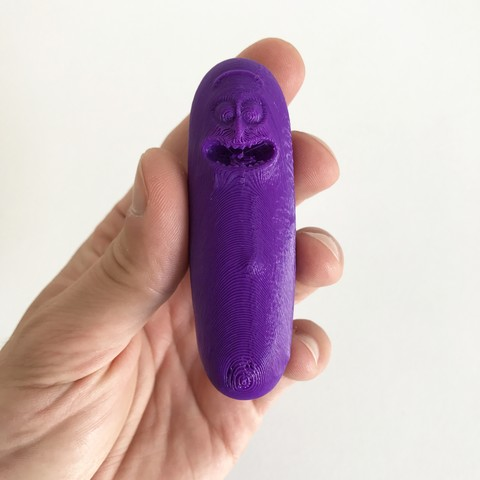 Free Pickle Rick STL file, Pierre